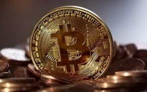 bitcoin, jort kelder